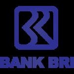 bank bri (1)